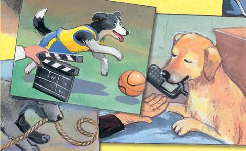 """Detalj ur omslaget till """"Hundar som jobbar"""". Alfabeta förlag."""